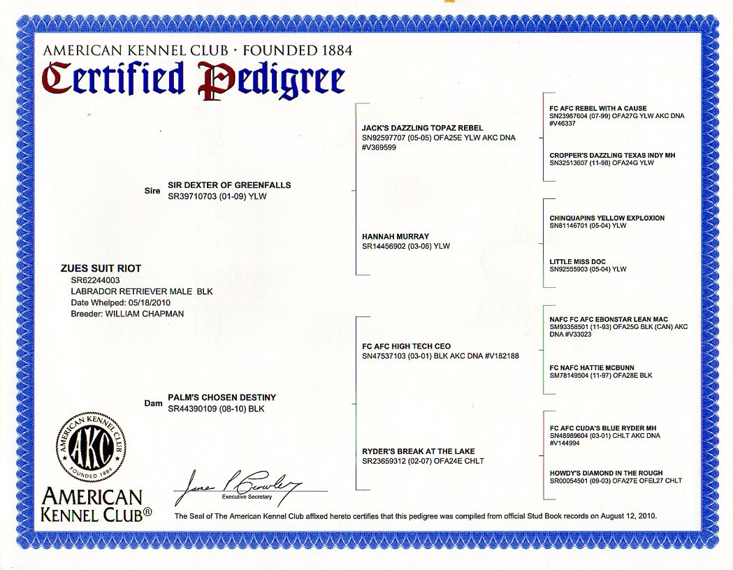 akc papers Online pedigree certifications from the akc start at $15 for four generations and  $17 for  can you get a dog akc registered without papers.